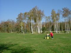木々に囲まれパークゴルフ