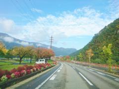 湯沢中央公園周辺の紅葉です